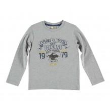 Camiseta Explore gris