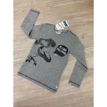 Camiseta roar concrete jungle